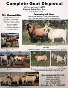 goat-dispersal
