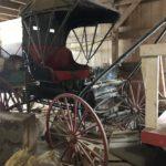 original-buggy