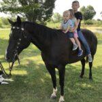 Pitch, Quarter Horse Gelding